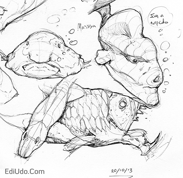 sketch_20-10-13_fish_crop_02